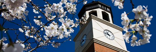 Photo of Guthrie tower in spring by Clinton Lewis.