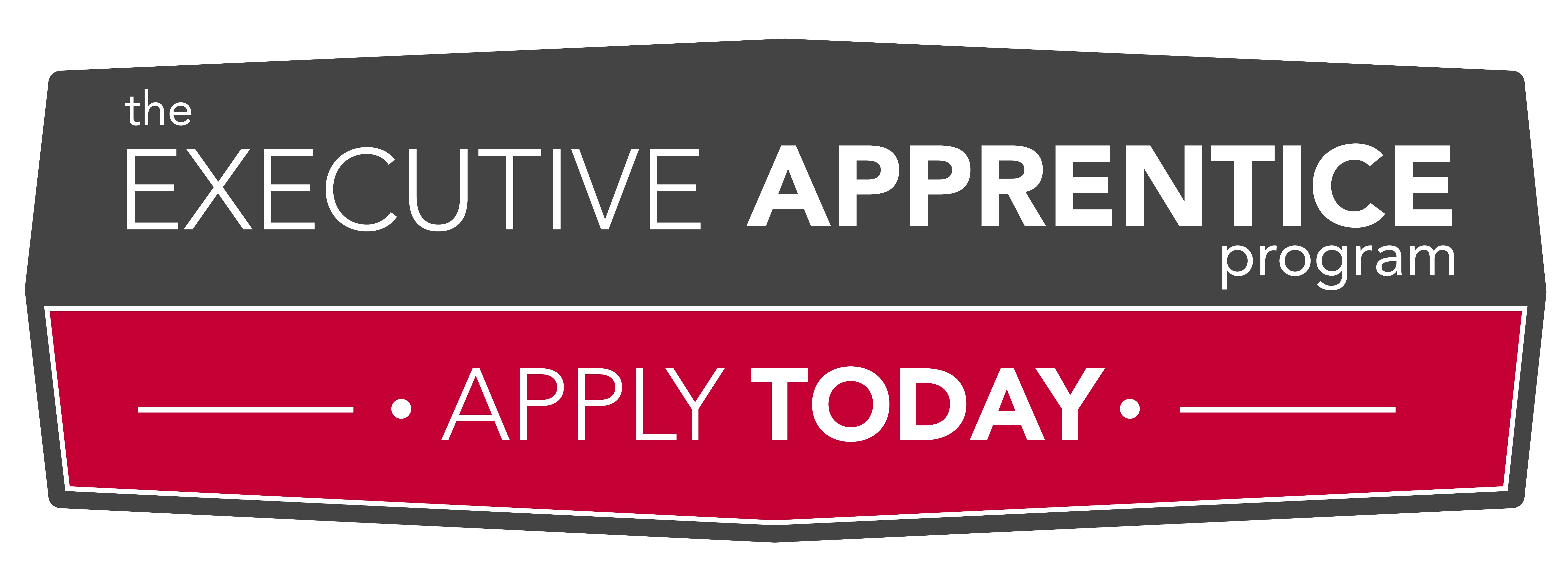 Executive Apprentice Program