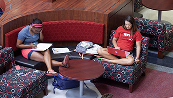 Students studying in DSU
