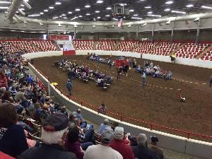 Wku Ag Expo Center Show Arena Western Kentucky University