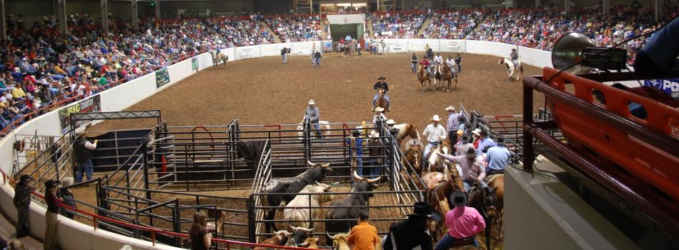 rodeo 2010