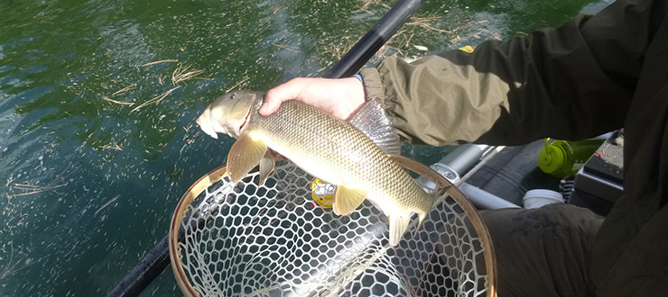 Darrell - Fly Fishing Montana 2014