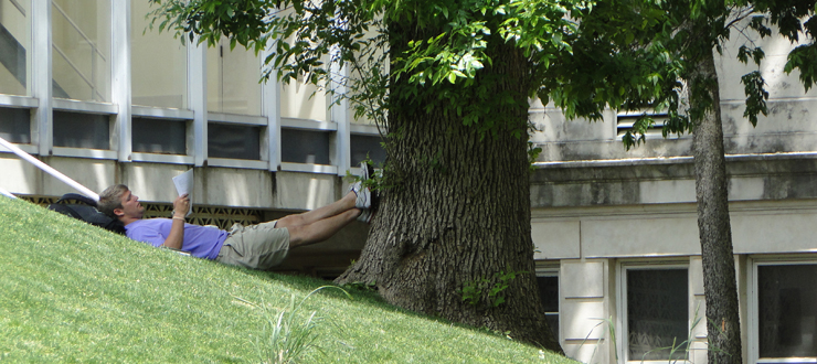 WKU Student Reading under a tree