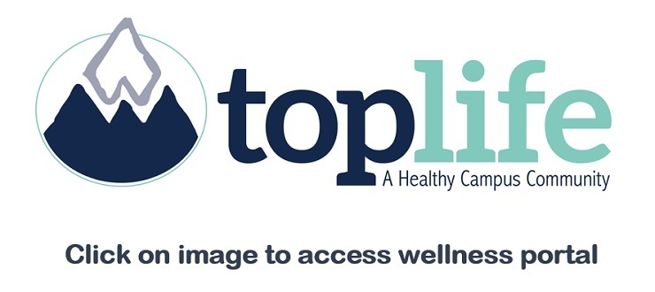 Wellness Portal Access; Start Date: At earliest convenience; End Date: September 1, 2017
