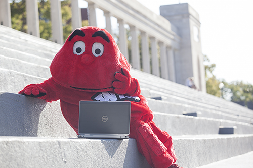 WKU online programs earn national rankings from U.S. News & World Report