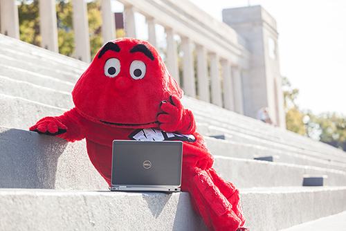 WKU offering fully online Work Force Administration degree