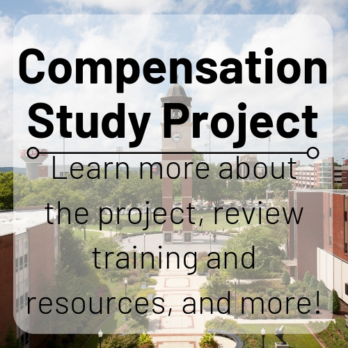 Compensation Study Project