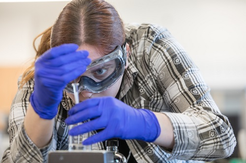 Chemistry Student Conducts Research on Removing Steroids From Wastewater