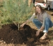 Tree Planting Day at the Durbin Project