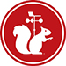 White Squirrel Weather named 2020 Weather Ready Nation Ambassador of Excellence