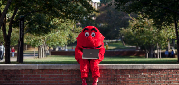 Big Red using a laptop outside on campus at WKU