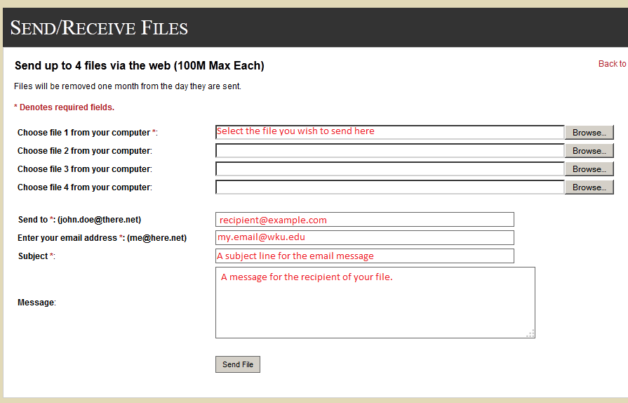 Example of the send file form