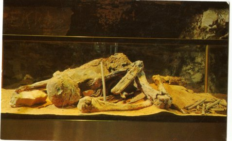 Mammoth Cave Mummy postcard