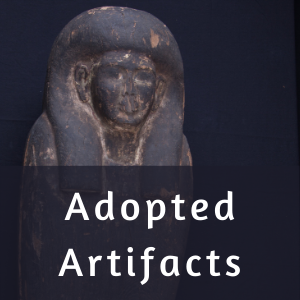 Adopted Artifacts