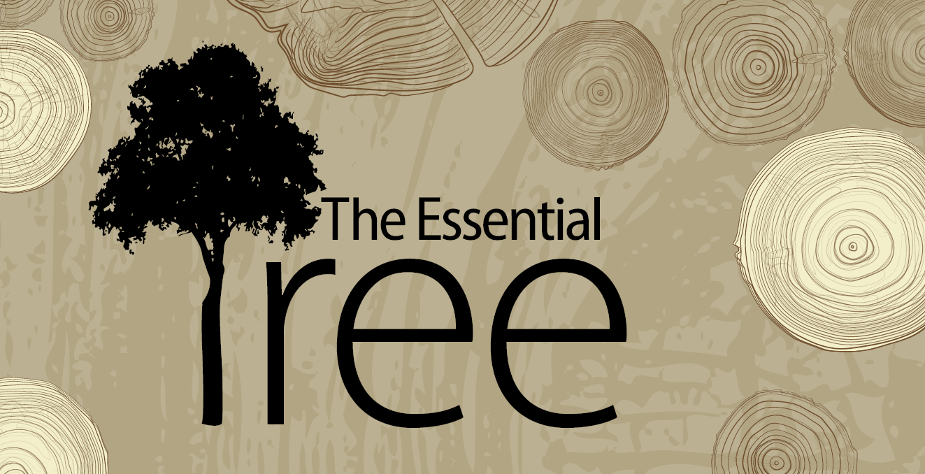 The Essential Tree