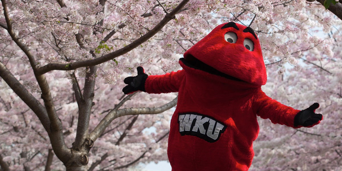 Big Red with his arms open under cherry blossoms on WKU's main campus