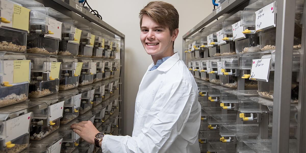 Reinhard Matthew Knerr WKU, Department of Biology Mentor: Dr. Noah Ashley