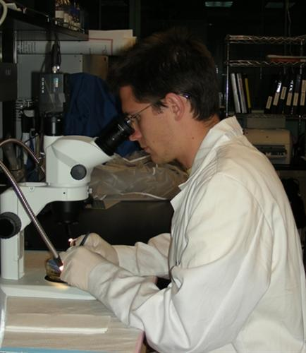 Brian Rogers in the lab dissecting a fish ear