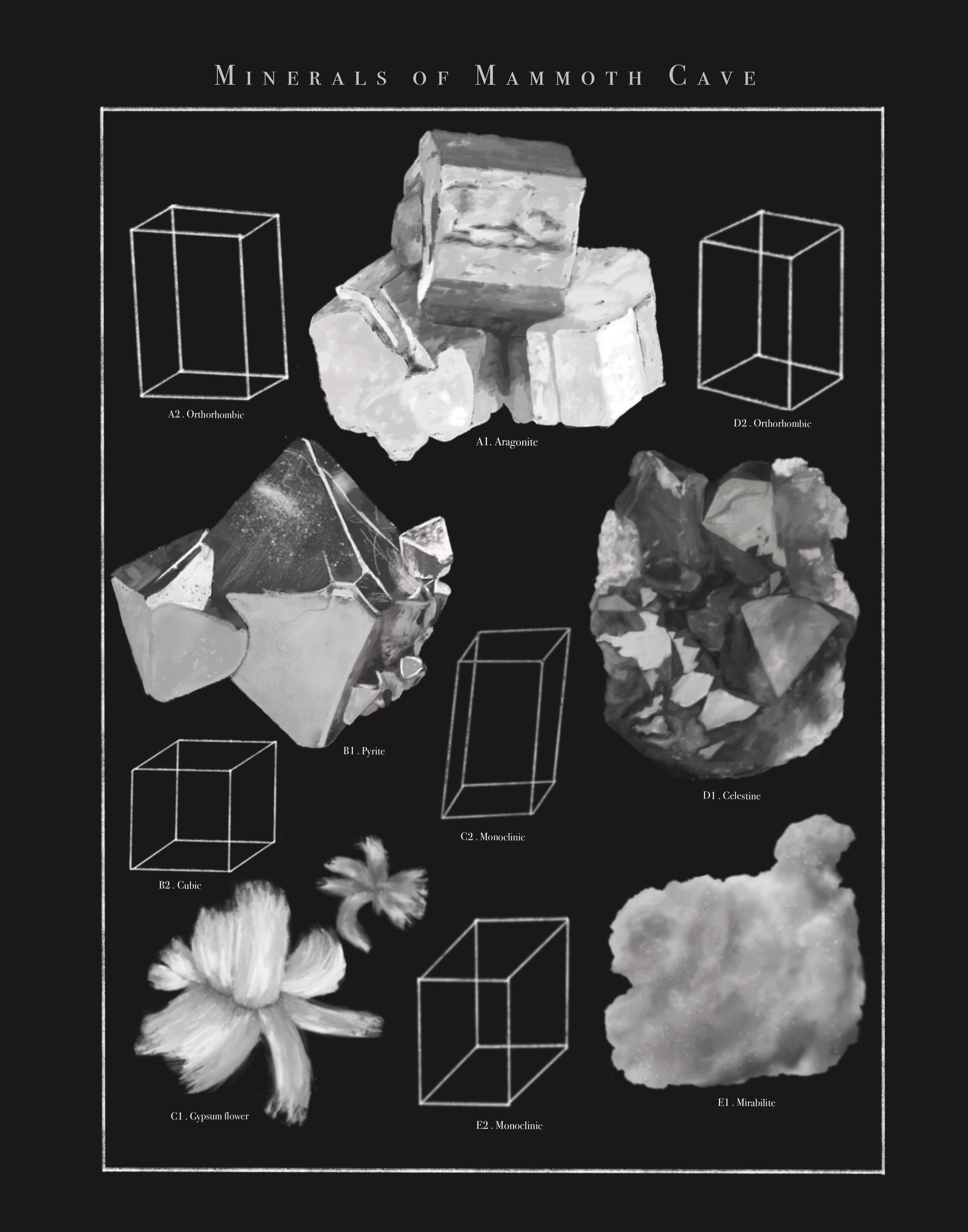 This work depicts a scientific collection of some minerals found in Mammoth Cave. Accompanying each realistic illustration is the respective crystal system, or a category classified by possible relations of the crystal axes. The following minerals are featured: Aragonite (orthorhombic), Pyrite (cubic), Gypsum flower (monoclinic), Celestine (orthorhombic), and Mirabilite (monoclinic).