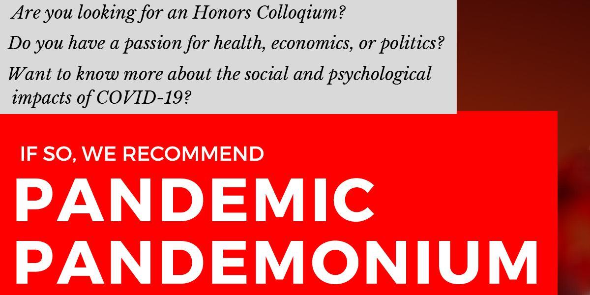 Pandemic Pandemonium Colloquia