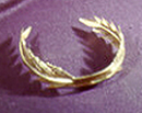 Poet Larueate laurel wreath