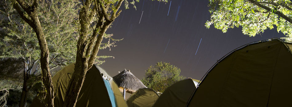 Stars pass through the sky over Phelwana Game Reserve outside Hoedspruit, South Africa. The 11 students participating in the African wildlife management class stayed in tents at the reserve during the 12-day course.
