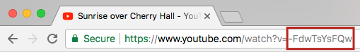 The YouTube Video ID outlined in red, found in the address bar of your browser after ?v=.