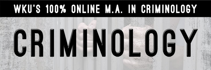 Criminology Banner