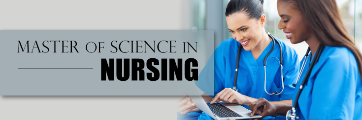 thesis about nursing career