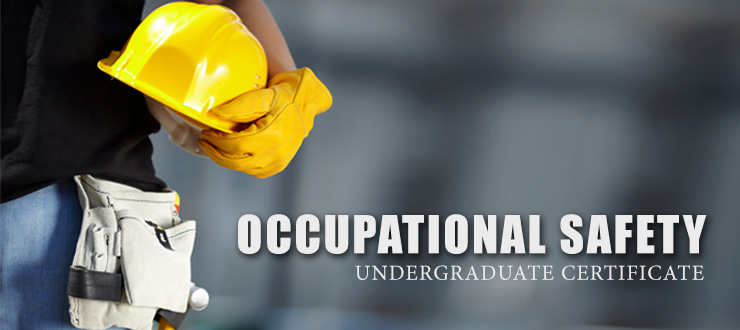 Occupational Health & Safety Undergraduate Certificate