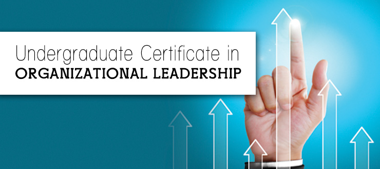 Undergraduate Certificate in Organizational Leadership