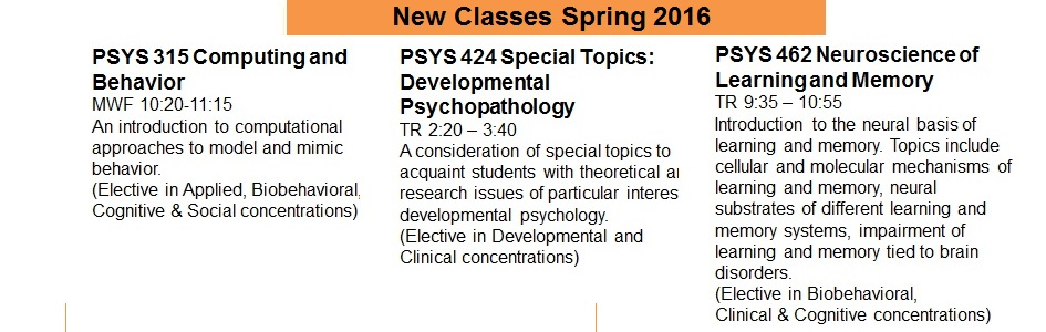 New Spring Courses