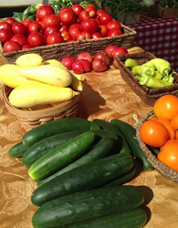 Photo of tomatoes, squash, peppers, cucumbers, etc.